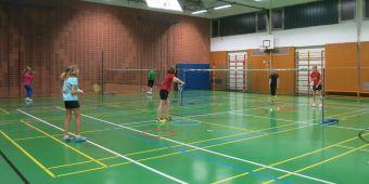 Badminton10